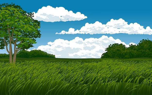 Piękna sawanna z chmurnym niebieskim niebem