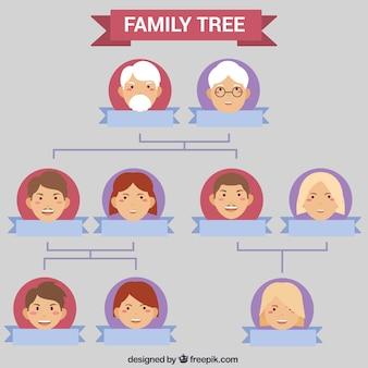 Piękne drzewo genealogiczne szablon