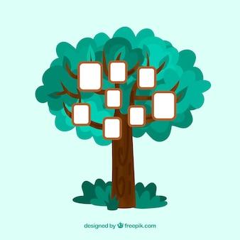 Piękne drzewo płaskie z ramki