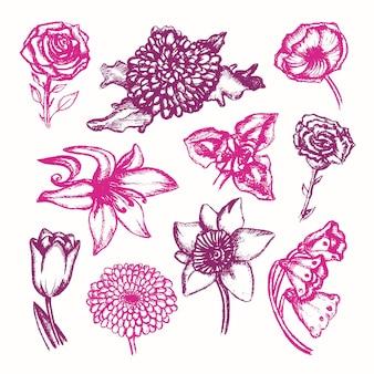 Piękne kwiaty - kolor wektor ręcznie rysowane skład ilustracyjny. realistyczna róża, konwalia, tulipan, stokrotka, irys, lilia, chryzantema, goździk, mak, narcyz.