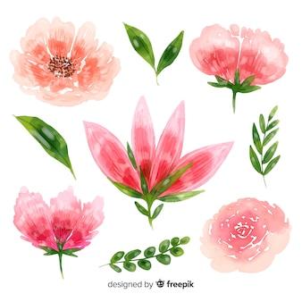Piękne kwiaty w tle akwarela