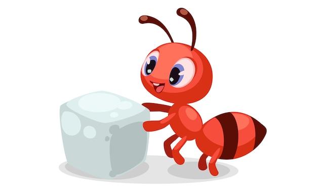 Piękne miny na twarzy mrówki po obejrzeniu kostki cukru