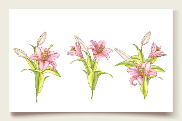 Piękne ręcznie rysowane ilustracja kwiaty lilii