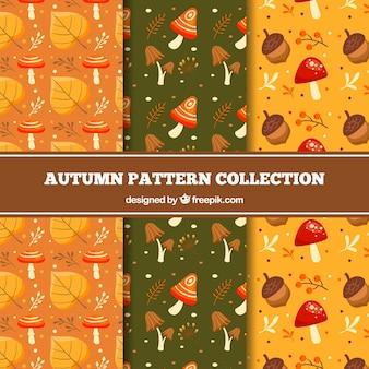 Piękne ręcznie rysowane kolekcja jesień wzór