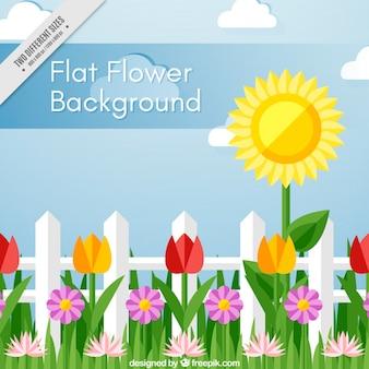 Piękne tło z ozdobnymi kwiatami w płaskiej konstrukcji