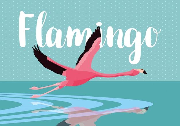 Pięknego flaminga ptasi latanie nad wodą