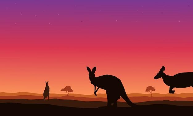 Piękno krajobraz kangur na wzgórzu sylwetki