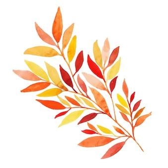 Piękny akwarela jesień liść