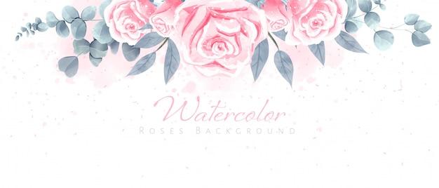 Piękny akwareli róż tło dla tapety