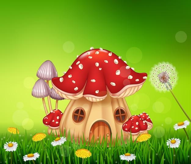 Piękny dom grzybów