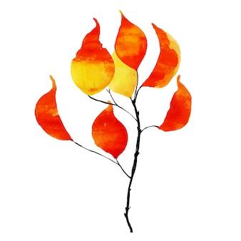 Piękny element akwarela jesień liść