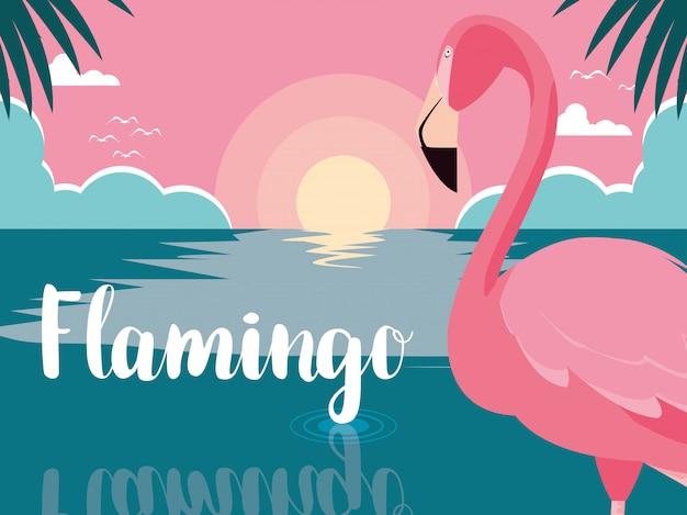 Piękny flamingo ptaka stojak w krajobrazie