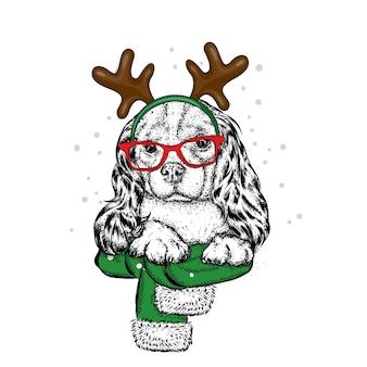 Piękny kot w świątecznym stroju.