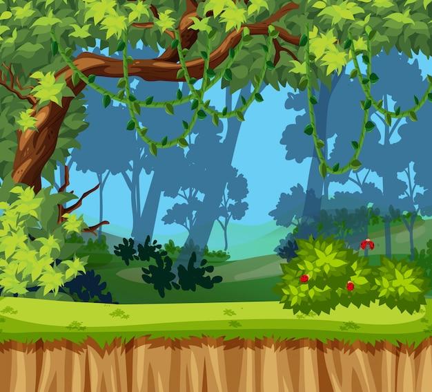 Piękny krajobraz dżungli