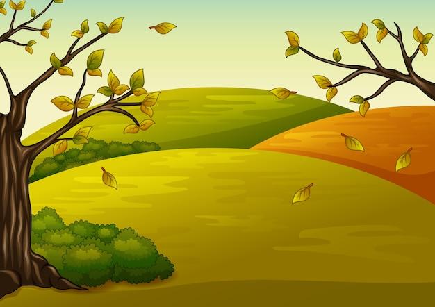 Piękny krajobraz jesień i spadające liście
