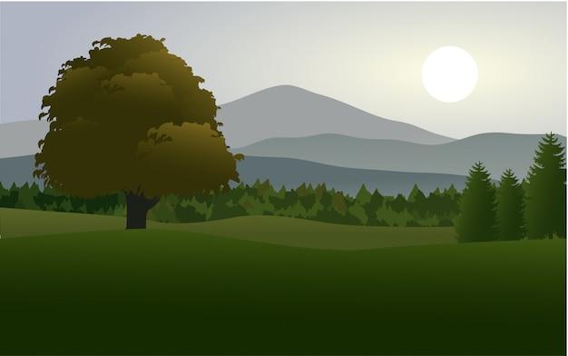 Piękny krajobraz łąki