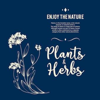 Piękny kwiatowy tło. element do karty projektu lub zaproszenia