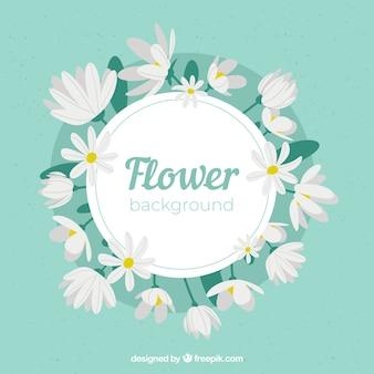 Piękny kwiatowy tło z płaska konstrukcja
