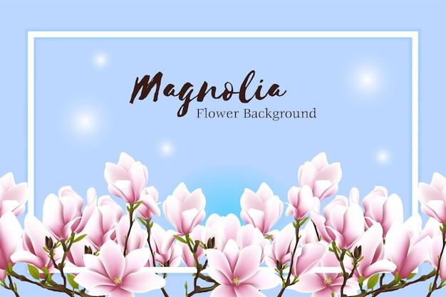 Piękny magnoliowy kwiat ramy tło