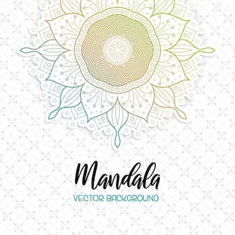 Piękny mandala biały tło