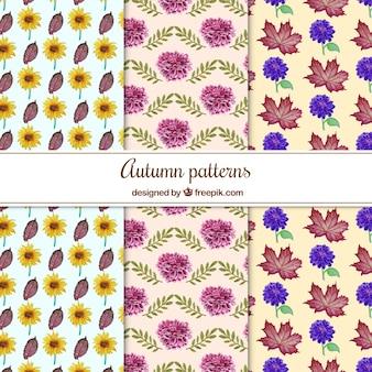 Piękny pakiet akwareli jesiennych wzorców