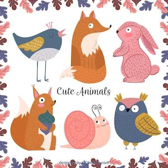 Piękny pakiet cute zwierząt