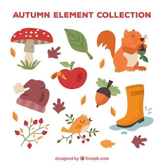Piękny pakiet zabawy jesiennych elementów