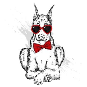 Piękny pies w okularach i muszce