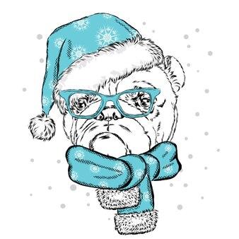 Piękny pies w stroju świątecznym i noworocznym