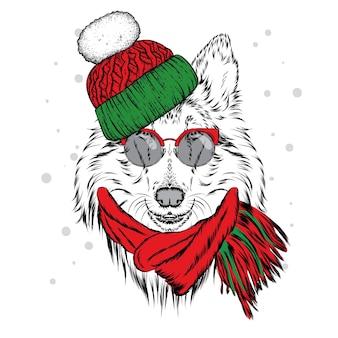 Piękny pies w świątecznych ubraniach