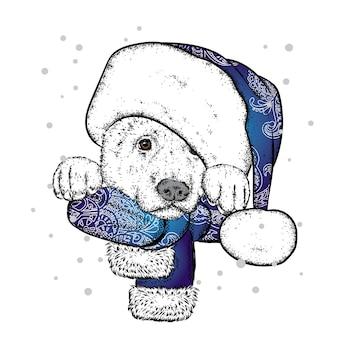 Piękny piesek w czapce i szaliku mikołajki nowy rok i boże narodzenie