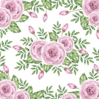 Piękny rumieniec fioletowy kwiat akwarela tło