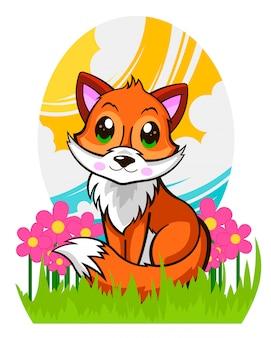 Piękny słodki lis w trawie