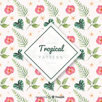 Piękny tropikalny tło