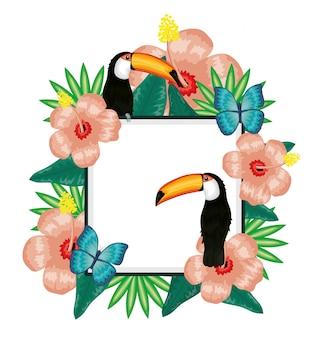Piękny tukan i motyle z kwiatową dekoracją