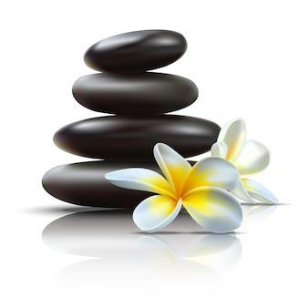 Piękny wektor zestaw spa z czarnymi kamieniami do masażu i dzikimi tropikalnymi kwiatami z odbiciem.