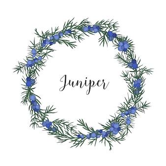 Piękny wieniec, okrągła ramka lub obwódka z gałązek jałowca z ręcznie rysowanymi jagodami na białej przestrzeni