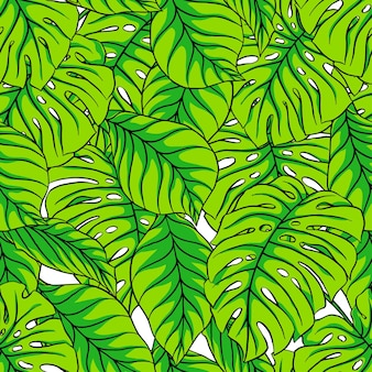 Piękny wzór z zielonych liści palmowych.