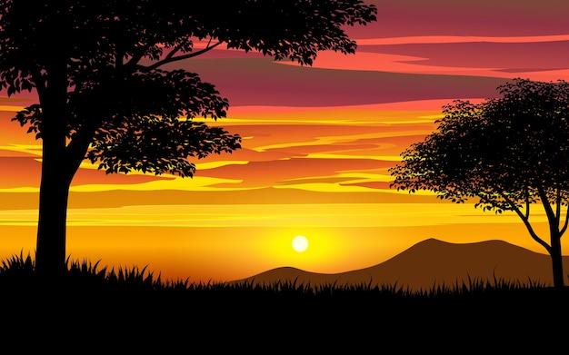 Piękny zachód słońca na sawannie z drzewami