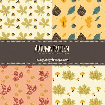 Piękny zestaw jesiennych wzorów