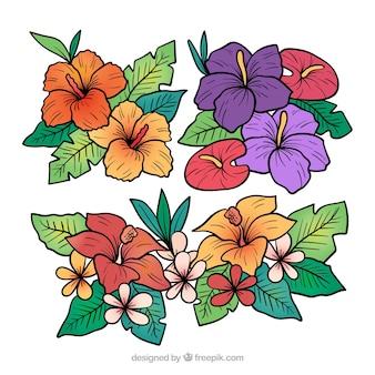 Piękny Zestaw Ręcznie Rysowane Tropikalnych Kwiatów Darmowych Wektorów