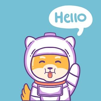 Pies astronauta
