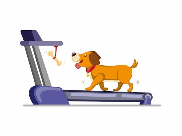 Pies biegnący na bieżni, aby uzyskać kość. szkolenie psa do biegania lub chodzenia w domu. kreskówka płaski ilustracja na białym tle w tle
