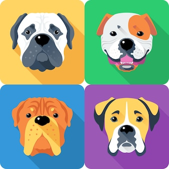 Pies bullmastiff, francuski mastif, bokser i buldog amerykański rasy twarz ikona płaska konstrukcja