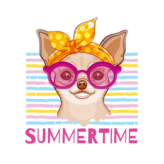 Pies chihuahua w opasce i okularach mody. wektor ładny szczeniak dziewczyny. ilustracja kreskówka w fajnym stylu hipster. letnia sztuka zwierząt.