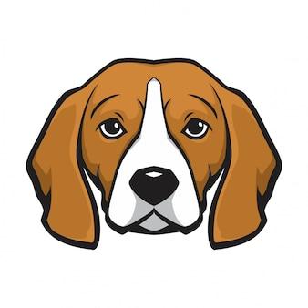 Pies głowy beagle
