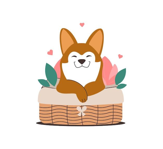 Pies husky w wiklinowym koszu szczeniak zakochany w wiosennym designie naklejka z podziękowaniem na dzień zwierzaka