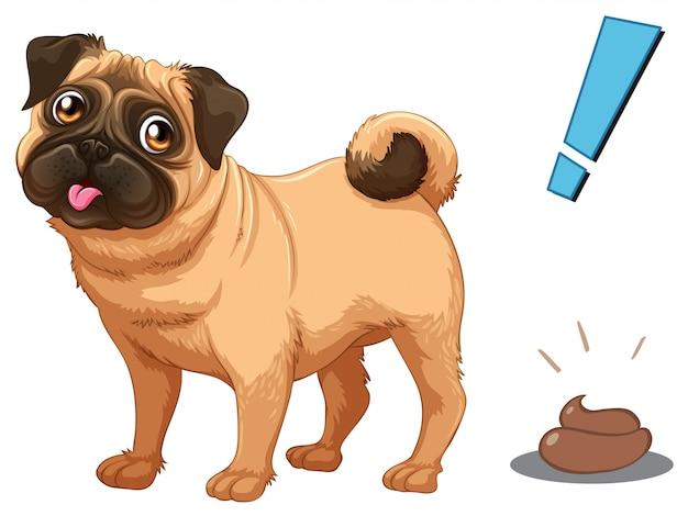 Pies I Poo Na Białym Tle Premium Wektorów