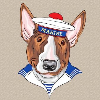Pies marynarz rasy bullterrier w czapce bez daszka i kamizelce w paski