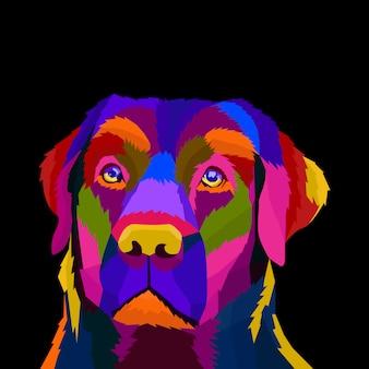Pies pop